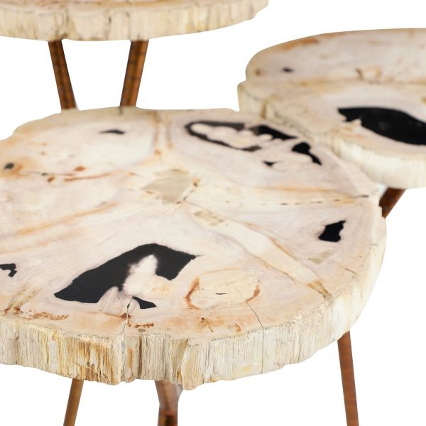 Fossil Stone Accent Table